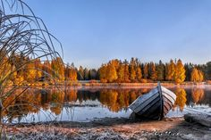 See how beautiful the nature of Finland looks like in different seasons! Helsinki, Autumn Scenes, Nature Animals, How Beautiful, Wonders Of The World, Wilderness, Landscape Paintings, Norway, Natural Beauty