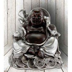 Boeddha happy fortune met geldmunten