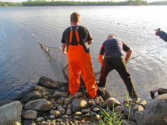 Traditional fishing on Lake Saimaa, Savonlinna. #saimaamoments
