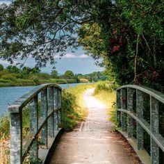 Scenic view of laune bridge in killorglin by Anita Horvat Display Advertising, Print Advertising, Marketing And Advertising, Us Images, Wall Art Prints, Paths, Trail, Bridge, Bro