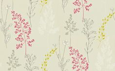 Summer Meadow (212860) - Sanderson Wallpapers - A finely etched botanical print creating a delicate and pretty look in a contemporary classic style.  Shown in magenta and linden. This is a paste the wall product. Please request a sample for true colour match.