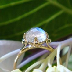The Venus Lotus Ring in 18k Gold and Rose by HeartofWaterJewels
