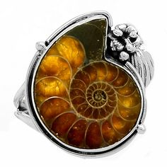 Fossil - Ammonite 925 Sterling Silver Ring Jewelry s.6.5 SR194102 | eBay