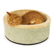 Check out this deal on Amazon! Get this K&H Manufacturing Thermo-Kitty Bed for only $19.54! Normally $67.99! Keep your kitty warm and cozy with this Kitty-Bed! If you want this, grab this deal now! It won't last long! Get Free Shipping on orders over $49.00 or more or sign up for a free trial of …