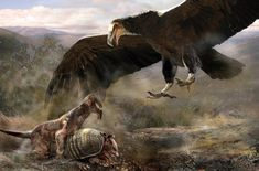 A huge Argentavis magnificens swoops in to claim the kill of a Thylacosmilus atrox by Velizar Simeonovski