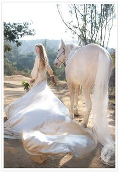 Enchanted horse photography