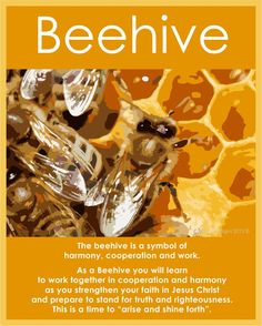 Sisters in Zion: Bee Inspired (Beehives)