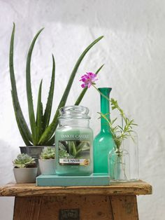 Unwind after the festive season with Aloe Water - a blend of cleansing, refreshing water with thick soothing Aloe to create a wonderfully relaxing fragrance experience.