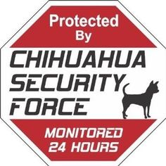 Chihuahua Security Force