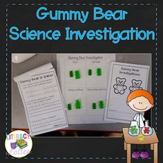 """This activity makes a great introduction to the scientific method!  Included in this product are full instruction and a student investigation booklet.  The booklet gives students a page poses the question, """"What happens when you soak a gummy bear in a solution?""""  and gives students a place to write a hypothesis.Then, there is a page to document results about each gummy bear after it has soaked in the solution.Investigation basics:A gummy bear is soaked overnight in water, salt water…"""