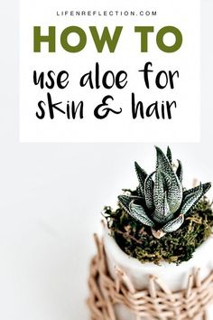 Want to know how to use aloe vera for skin and hair? We gathered up 20 ways to aloe!  #aloevera #skincaretip #AloeVeraForSkin Aloe Vera Face Wash, Aloe Vera Facial, Aloe Vera For Skin, Aloe Vera Skin Care, Best Nutrition Food, Health And Nutrition, Healthy Food, Aloe For Hair, Aloe Vera Uses