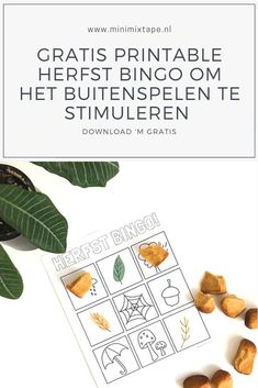 Gratis printable spelletje voor de herfst