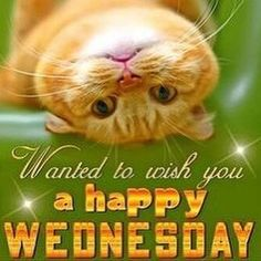 Happy Wednesday everyone...we are half way through the week!  #ItsWednesday #HalfWay #Hello #GoodMorning #GoodAfternoon #ExpressYourself #ThinkPositive #Smile #Laugh #BeHappy #Don'tHate #StopNegativity #DreamBig #NewDay #HaveFun #FeelGood #EnjoyToday #StayPositive #GetMotivated #BeInspired #LoveAlways #LiveYourLife #LoveYourself #HaveAGreatDay #LetThereBePeaceOnEarth