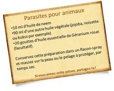 huile de neem contre les parasites des animaux