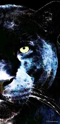 Black Panther Art - After Midnight Painting by Sharon Cummings - Black Panther Art - After Midnight Fine Art Prints and Posters for Sale