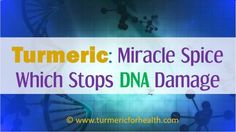 DNA damage can lead to several issue in body. Fortunately turmeric can help in several ways to stop it,