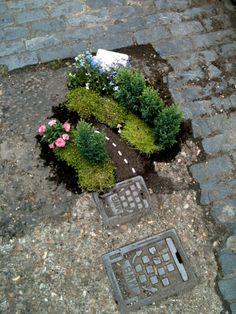 Pot hole gardener_guerilla gardening!