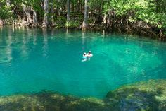 Manatee Springs State Park ......there is an underwater cave right there on this side of springs.....ashame I dont have any of my pics anymore