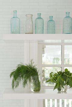 Open shelving in front of kitchen windows hold vintage glass bottles and mason jars of fresh herbs.