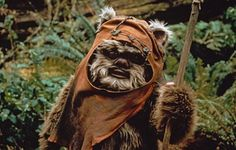 Funny pictures about Ewok life. Oh, and cool pics about Ewok life. Also, Ewok life photos. Star Wars Film, Star Trek, Starwars, Star Wars Characters, Star Wars Episodes, Movie Characters, Fictional Characters, Ewok Costume, Halloween Costumes