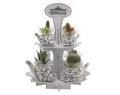 kit 8 pezzi cornucopie porta vaso con espositore cm 45h http://www.glesa.it/articoli/20500