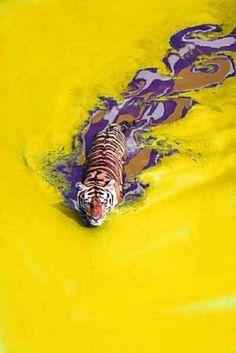 Love Purple. Live Gold. L S U