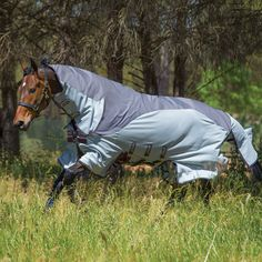Amigo Three-In-One Horse Blanket/Fly Sheet