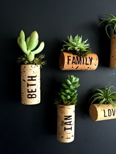 5 personalized air plant cork magnets with burning technique Living decor- magnets Tillandsia air plant or succulent// unique valentine gift by omorfigiadesigns on Etsy https://www.etsy.com/ca/listing/239985385/5-personalized-air-plant-cork-magnets