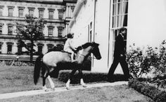 "Every little girl dreams of having a pony, but young CAROLINE KENNEDY actually had one. A gift from LYNDON B. JOHNSON, the pet pony roamed around the JFK White House gardens and made for great photos. So great that Neil Diamond has said that one of those photos inspired his hit song ""Sweet Caroline."" I've never discussed it with anybody before — intentionally,"" the singer-songwriter told the Associated Press. ""I thought maybe I would tell it to Caroline when I met her someday."""