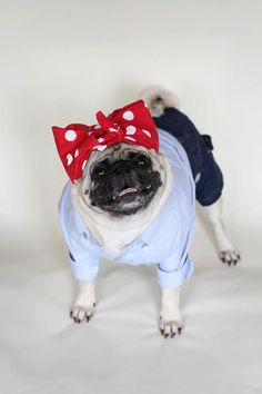 Puggie the Riveter. | 26 Costumes That Prove Pugs Always Win At Halloween