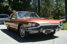 Hemmings Find of the Day – 1965 Ford Thunderbird | Hemmings Blog: Classic and collectible cars and parts