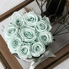 Konservierte Rosen in mint grün als tolle Dekoration die ewig hält.