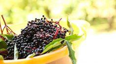 Unsere Lieblingsrezepte für die gesunden und schmackhaften Holunderbeeren!