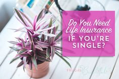 Why You Should Consider Life Insurance, Even If You're Singl... | Frugal Beautiful | Bloglovin'
