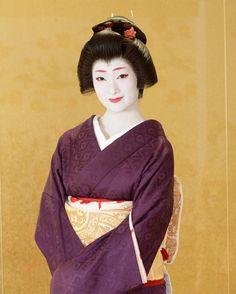 geimei:   November 2016:Famous Geiko Kofuku (Shigemori Okiya) of Miyagawacho wearing a finely pattenered violet kimono.  Source: Photo Tanaka on Instagram