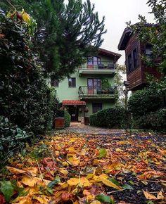 Ağva Picolo Mondo Hotel, sonbahar'da kasım ayında, yağmurlu bir hafta sonu da olsa, sessiz sakin doğasıyla müthiş unutulmaz güzellikler yaşatıyor. Tavsiye ederiz. 📞 0216-7217379 🏡 www.kucukoteller.com.tr/piccolo-mondo-otel.html?utm_content=buffer4d4f5&utm_medium=social&utm_source=pinterest.com&utm_campaign=buffer 🌿 Fiyatlar iki kisi kahvalti ve aksam yemegi dahil 345 tl.