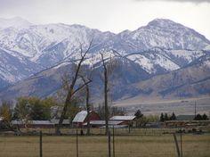 Bozeman, Montana.......a wonderful place..so beautiful, peaceful.  8 wonderful summers in the Gallatin Mountains