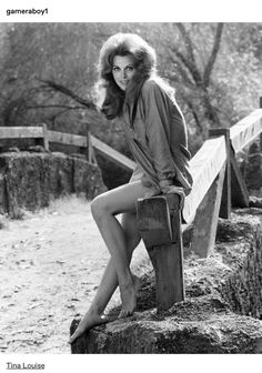 Picture of Tina Louise Classic Actresses, Female Actresses, Actors & Actresses, Vintage Hollywood, Hollywood Glamour, Hollywood Actresses, Tina Louise, Mary Ann And Ginger, Ginger Grant