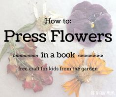 How to press flowers in a book: advice from @aboutthegarden