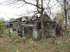 Abandoned shed on abandoned farm.