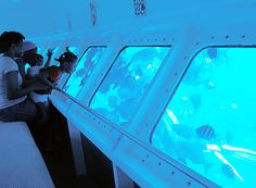 Explore life under water on a submarine tour in Grand Cayman.