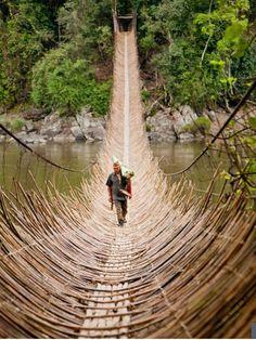 Cane Bridge - village Kabua - Republic of Congo