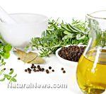 Oregano is a healing herb and natural anti-biotic