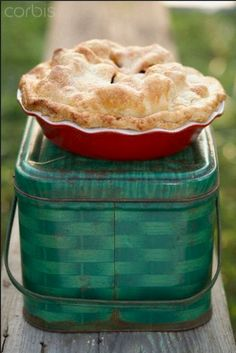 Country Woman At Heart - Lovely pie just baked. Is it apple or apricot or maybe a meat pie.