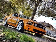 Ford USA - Saleen Mustang Parnelli Jones Edition - 2007 Parnelli Jones, Saleen Mustang, Mustang For Sale
