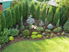 53 backyard landscaping ideas with private fence 46 - Garden Design Ideas 2019 Easy Backyard, Plants, Cottage Garden, Landscape Design Plans, Backyard Garden, Evergreen Garden, Backyard Landscaping Designs, Backyard Garden Design, Backyard