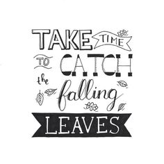 Take Time To Catch The Falling Leaves Hand Lettering Quotes, Creative Lettering, Typography Quotes, Brush Lettering, Calligraphy Doodles, Calligraphy Quotes, Leaf Quotes, Bullet Journal Quotes, Drawing Quotes