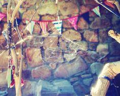 Spiderweb | Krüger van Deventer