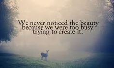 We never noticed the beauty because we were too busy trying to create it.