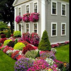 I want a yard and little house just like this !!!!!!